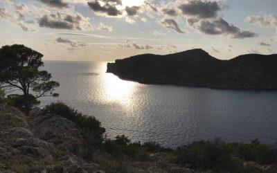 Unter der Sonne Mallorcas