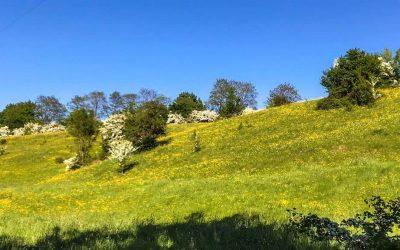 Eine andere Welt: kleine Orte, viel Natur