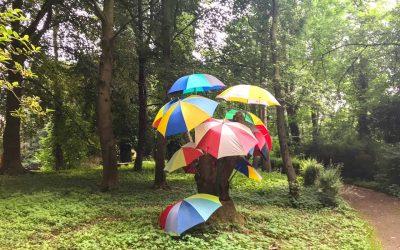 Bullenhitze und Regenschirme